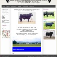 Idvies Farm | Aberdeen Angus Trade
